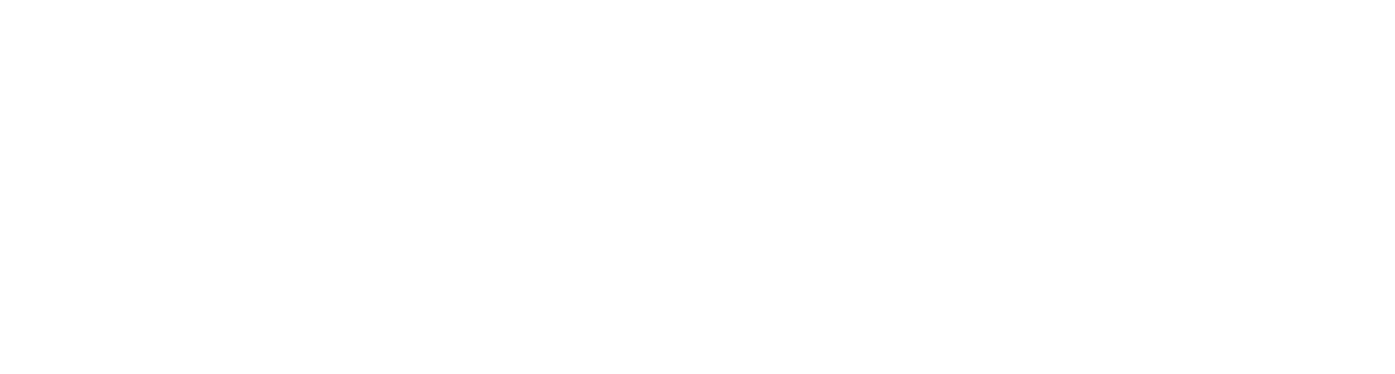 Social Performance Issue Guides