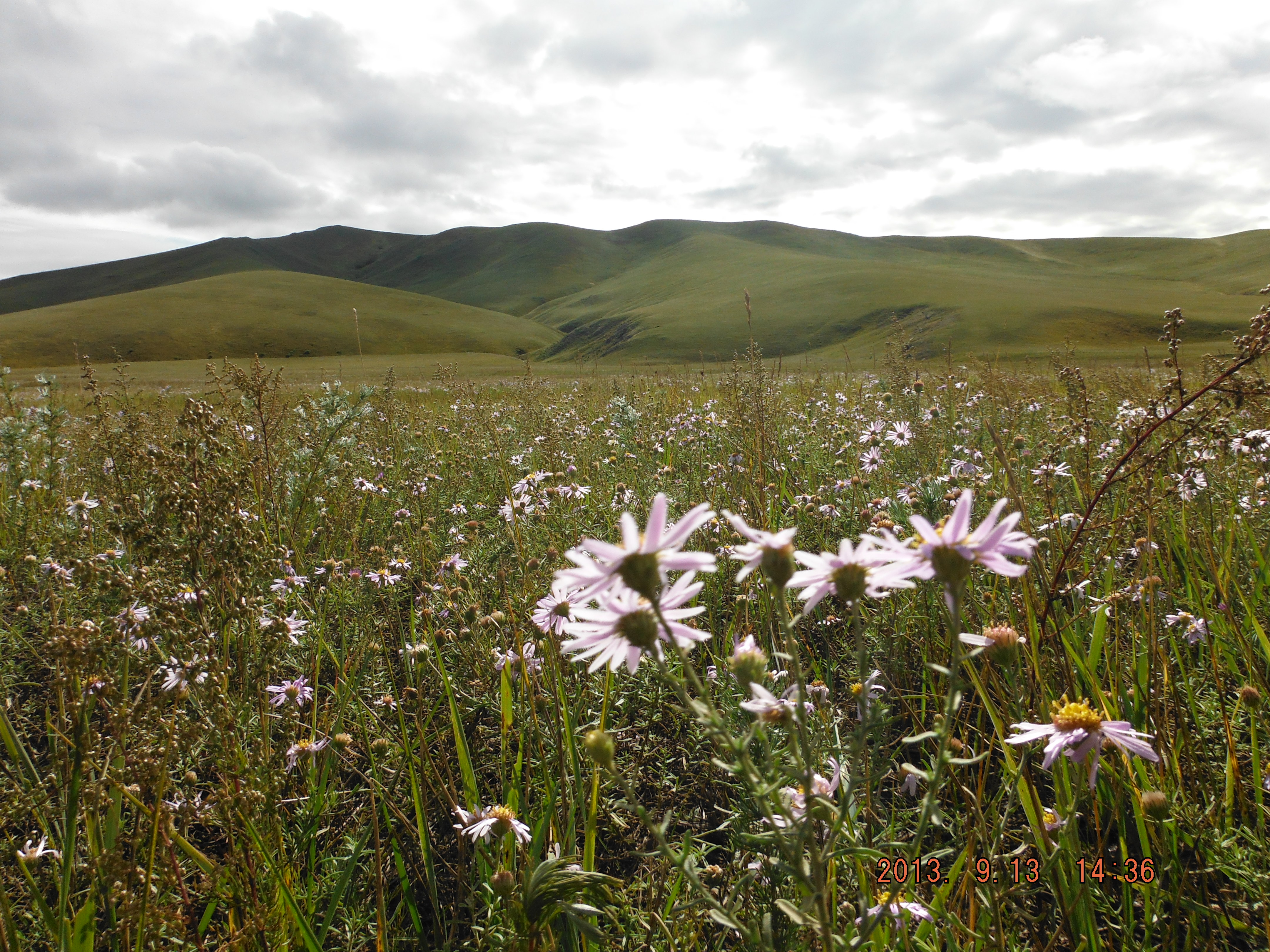 Videos highlight impact of Mongolian mining - Sustainable