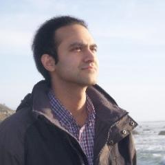 Professor Saleem H Ali