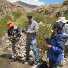 Environmental Geochemistry of Abandoned Mines