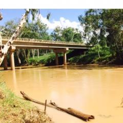 Assessing the Ecotoxicology of Salinity on Organisms from Seasonally Flowing Streams in the Bowen Basin